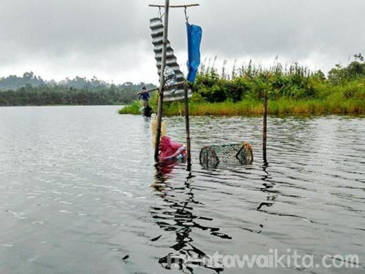 Keindahan Menyusuri Danau Mangeungeu yang Eksotis di Mentawai