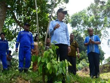 Pemda Mentawai Akan Kembangkan Pertanian Terpadu