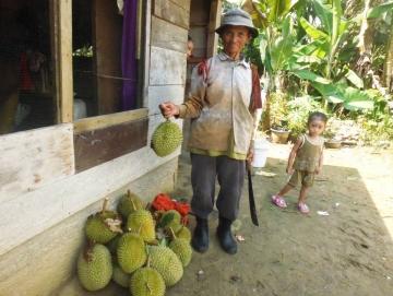 Warga Matobe Panen Durian