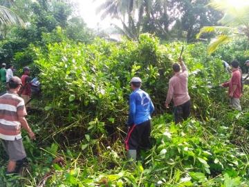Sebanyak Rp109 Juta Dana Desa Saibi untuk Pembabatan Jalan