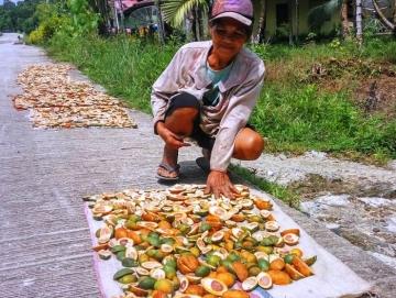Kelompok Tani Dusun Seay Lama Dapat Bantuan Bibit Pinang