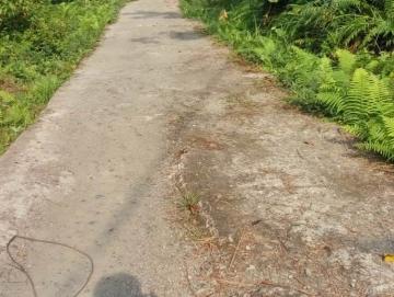 Warga Mabola Minta Pemerintah Buatkan Jalan ke Kampung Baru