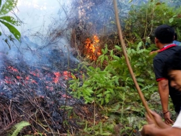 Hutan Terbakar di Sikakap Dua Rumah Warga Nyaris Terbakar