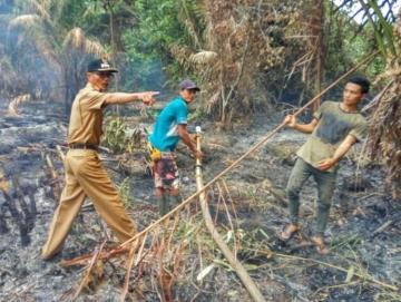 Damkar Pastikan Kebakaran Hutan Panatarat dan Cempungan Sudah Padam