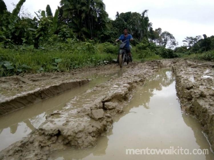 Jalan Trans Mentawai Terbantu Disaat Kering Terjebak Disaat Hujan