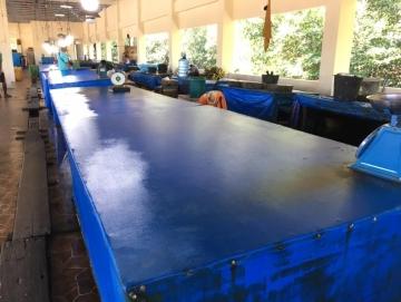 Cuaca Buruk Stok Ikan di Tuapeijat Berkurang