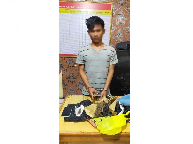 Seorang Mahasiswa Mentawai Terduga Penyalahguna Narkoba Ditangkap Polisi