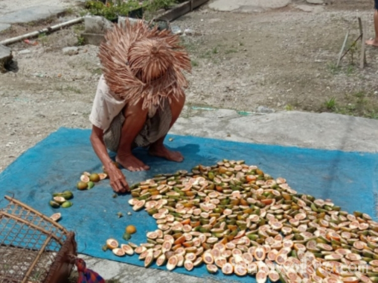 Pinang Kering Naik Rp14 Ribu Per Kilogram di Desa Sikakap