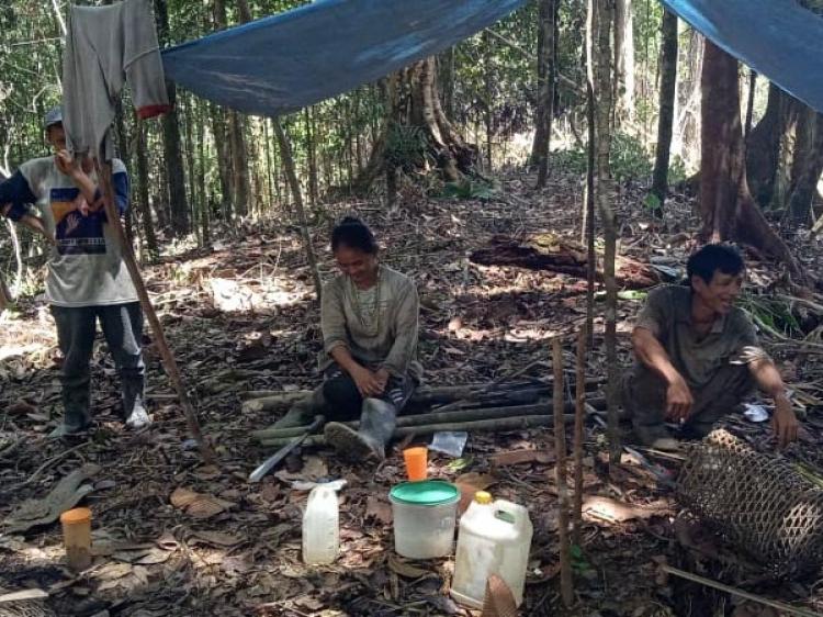 Warga Bekkeiluk Buka Lahan 10 Hektar untuk Tanam Pinang dan Pisang