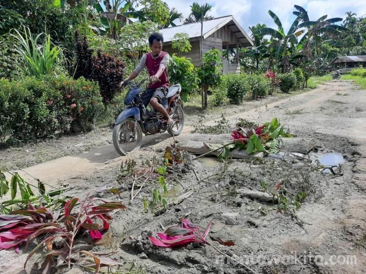 Jalan Tak Kunjung Diperbaiki Warga Tanam Bunga di Badan Jalan