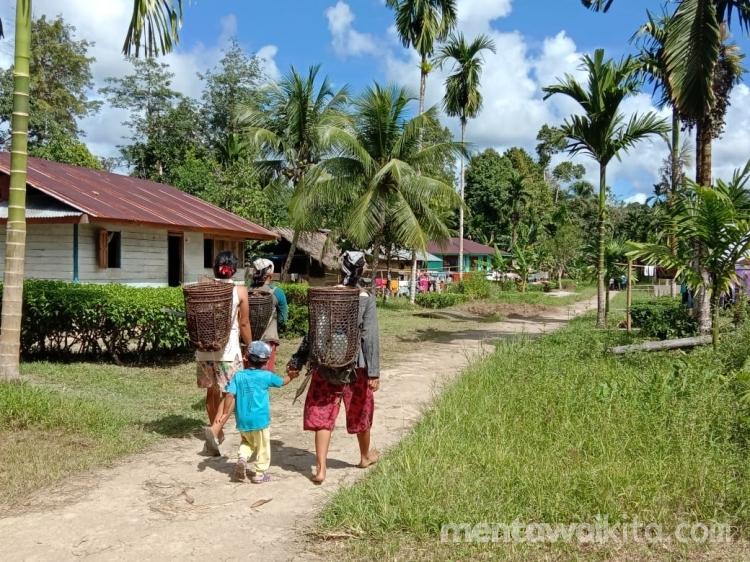 PLN Bangun Jaringan Listrik di Sejumlah Dusun di Pagai Utara Tahun Ini