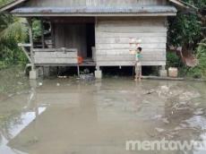 Banjir Rusak Lahan Pertanian Warga Mangorut Kecamatan Siberut Selatan