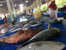 Cuaca Buruk Pasokan Ikan di TPI Berkurang