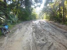 Jalan Berlumpur Bumdes Bulasat Berhenti Menampung Hasil Tani