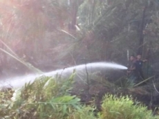 Pemadam Kebakaran Sikakap Berhasil Padamkan Api di Lahan Sikautek