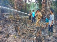 Kemarau Dalam Seminggu Terjadi Tiga Kebakaran Lahan di Mentawai