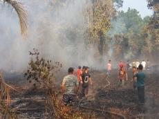 Kebakaran Lahan Meluas 20 Hektar di Sikakap Mentawai