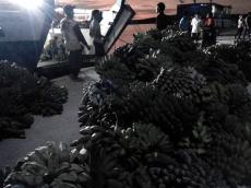 Warga Sikabaluan Minta Penyesuaian Jadwal Kapal Antarpulau dan Padang
