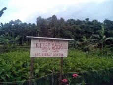 Kelompok Keret Baga Dapat Uang Jutaan dari Panen Palawija dan Jualan Kue