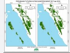 Warsi Tutupan Hutan Sumbar Berkurang 31367 Ha dalam Empat Tahun Terbesar di Mentawai
