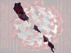 Kasus Baru Covid-19 Bertambah Didominasi dari Kalangan Guru di Mentawai
