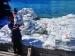 150 Karung Rastra Kecamatan Sikakap Busuk
