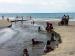 Menikmati Panorama Pasir Hitam Pantai Bubuakat