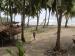 Disparpora Mentawai Belum Pungut Retribusi Selancar di Siberut Barat