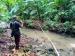 Aktivitas Penebangan Diduga Sebabkan Sungai Keruh Warga Laporkan PT MPL ke KPHP