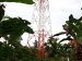 Jaringan Telkomsel di Saibi Sering Mati