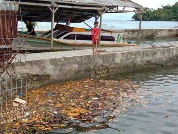 Laut Dipenuhi Sampah Wabup Mentawai Minta Pemdes Sikakap Segera Buat TPS
