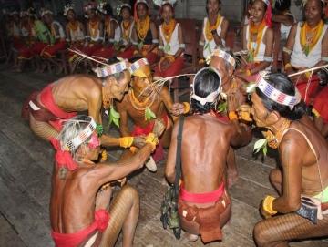 Musik Dalam Ritual Pulaggajat
